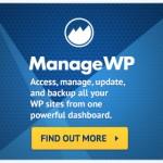 manage wp 300x250