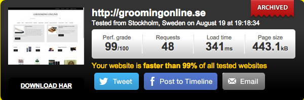 groomingonline pingdom test